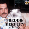 Freddie Mercury and His Cats