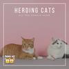 Herding Cats: What Makes It Impossible?