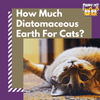 How Much Diatomaceous Earth For Cats?