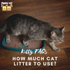 Here's the Deal: How Much Cat Litter to Use?