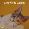 Help Your Fat Kitty Lose Weight