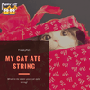 Just Christmas Things: My Cat Ate String