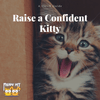 How to Raise a Kitten into a Confident Cat