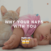 Nap Time: Why Your Cat Likes Napping With You