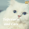How To Get Rid Of Tapeworms in Cats?