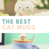 Best Cat Mugs Available to Buy!