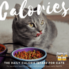 Calorie Count: The Daily Calorie Intake for Cats