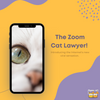 Internet Gold: The Zoom Cat Lawyer