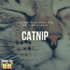 Here Are Some Things You Didn't Know About Catnip!