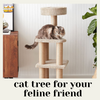 Why Your Cat Needs A Cat Tree