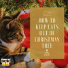How to Keep Cats Out of Christmas Tree?