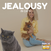 Do Cats Get Jealous? A Quick Peek
