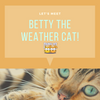 Meet Betty the Weather Cat!