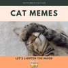 September Edition: Funny Cat Memes!