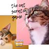 All You Need to Know About the Cat Scratch Game