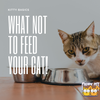 What Can Cats Not Eat? Here's A List