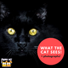 What the Cat Sees: A Cat's World Photographed