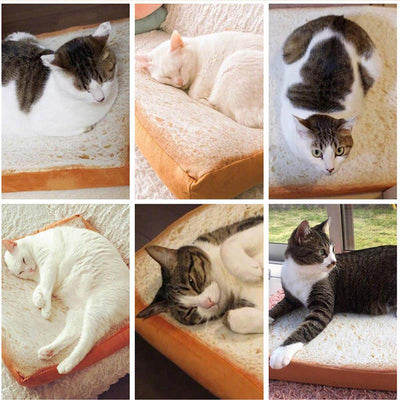 Toast Cat Bed Mat