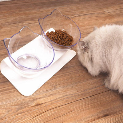 Twin Pet Bowls With Raised Stand