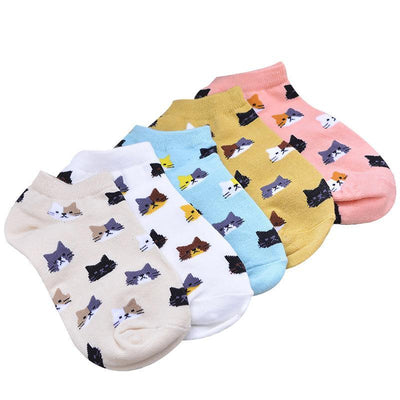 3 pair Cute Cat Face Cotton Socks-Socks-FreakyPet