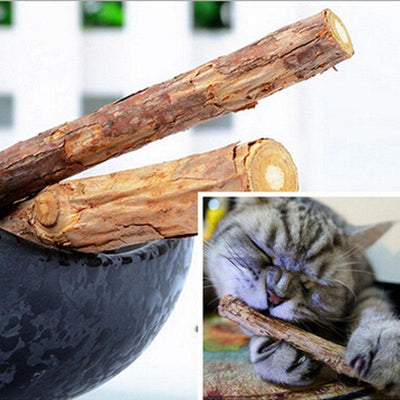 25Pcs Natural Matatabi Cat Teeth Sticks-Cat Toys-FreakyPet