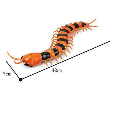 Remote Control Cat Insect Toy-Dog Accessories-FreakyPet
