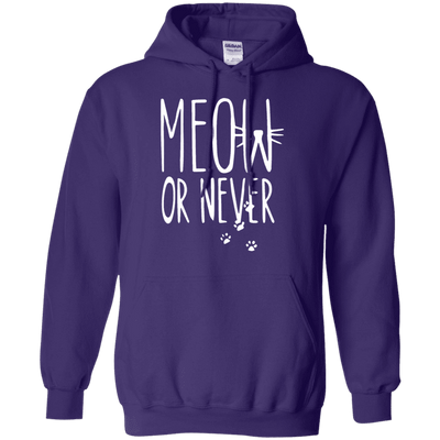 Meow Or Never Hoodie