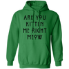Are You Kitten Me Right Meow Hoodie-Sweatshirts-FreakyPet