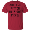 Are You Kitten Me Right Meow T-Shirt-T-Shirts-FreakyPet