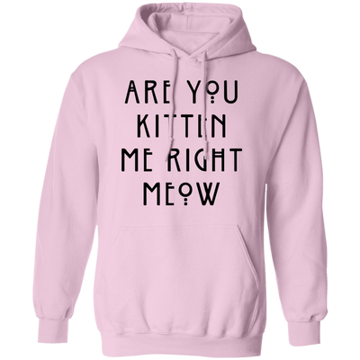 Are You Kitten Me Right Meow Hoodie