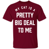 My Cat Is A Pretty Big Deal To Me T-Shirt