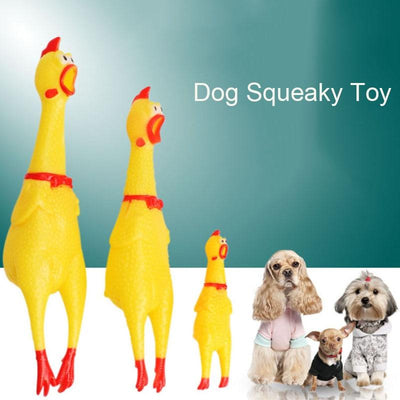 Squawking Chicken Dog Toys-FreakyPet