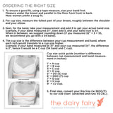 The Dairy Fairy Hands Free Nursing/Pumping Bra - Ayla - Cream