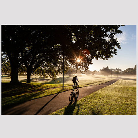 Boy Cycling_Hagley Park, Christchurch
