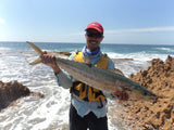 Shark mackerel on 2oz leadhead jig