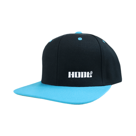 HODL Black And Teal Snapback Hat