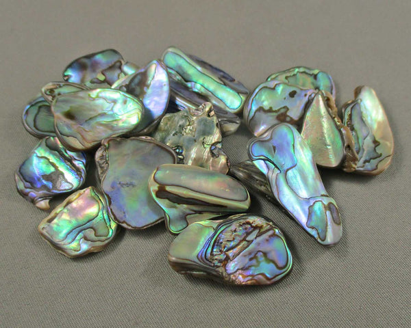 Abalone Shell 3pcs Z020
