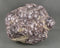 Lepidolite Crystal Raw (Large) 1pc (E029-2)