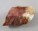 Inclusion Quartz (Lodolite) 1pc B565-1