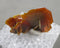 Wulfenite Specimen Micro Mount 1pc B465-2