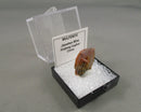 Wulfenite Specimen Micro Mount 1pc B341-4