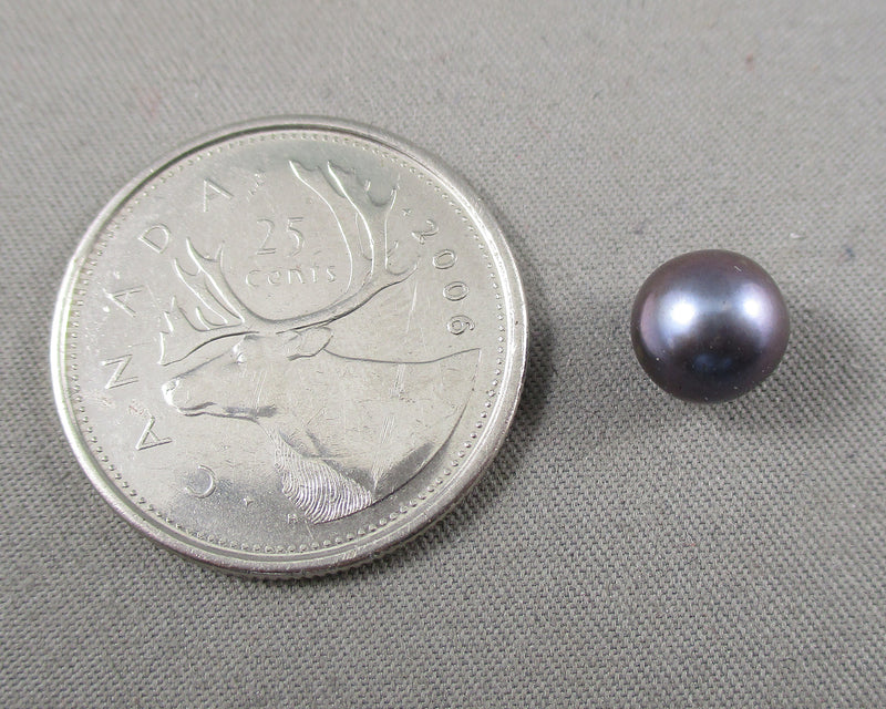 Purple Akoya Pearl 1pc B194-5