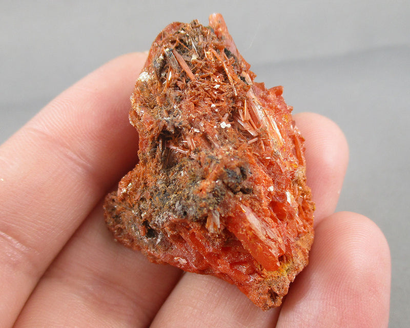 Crocoite Crystal 1pc B518-5