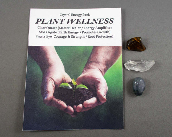 Plant Wellness! Crystal Energy Kit A018