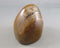 Tigers Eye Polished Stone 1pc B255-1