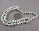 Mint Green Cultured Pearls 7mm (Z137)