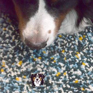 Smilin' Berner Pin