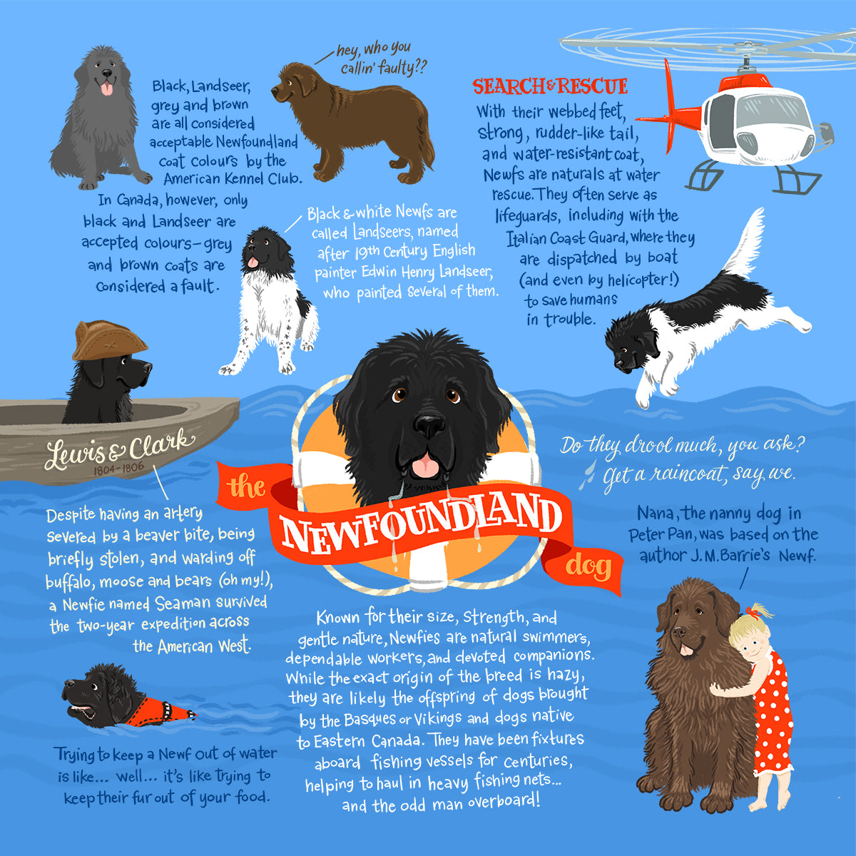 Newfie Infographic Print
