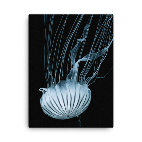 Bioluminescent Jellyfish Canvas Wraps
