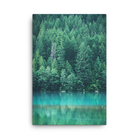 Forest Lake Canvas Wraps